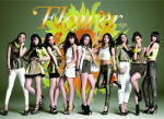 1309ch_flower_CDD